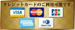 クレジットカードの利用可能です。